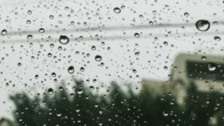 雨の日の画像