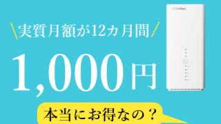 月額1000円キャンペーン